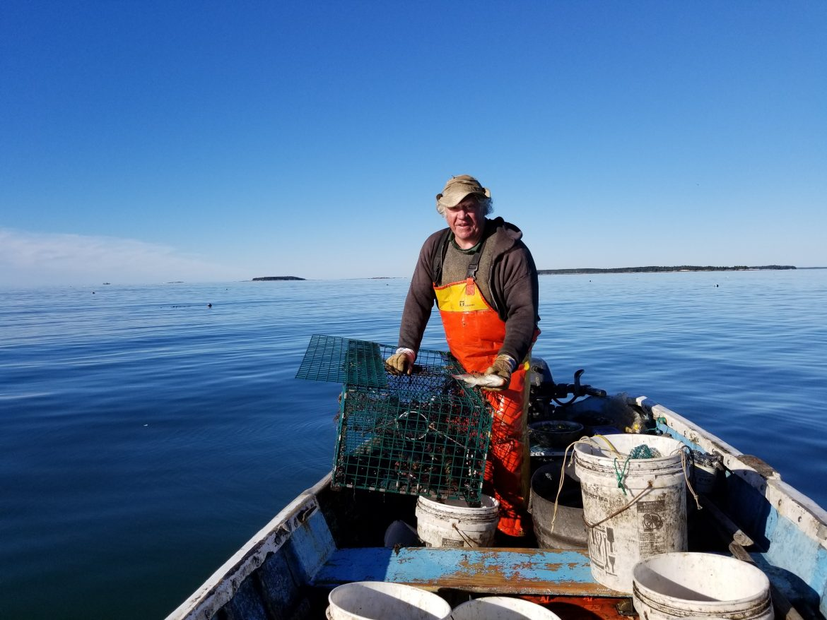 The Timeless Art of Hand-hauling Lobsters